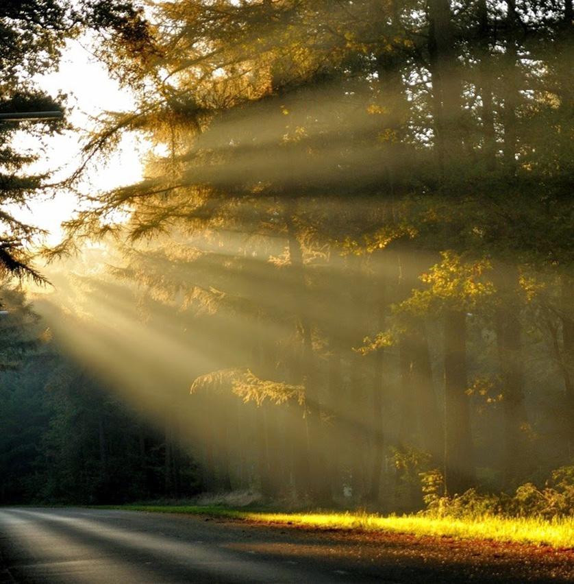 foto-daylighting-benefits